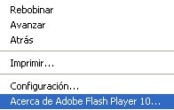 flash-version
