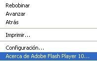 flash-version